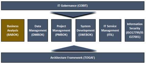 Data Management Advisors